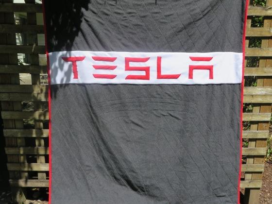 Teslabackzoom