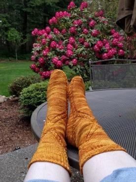 Golden Fleece Feet